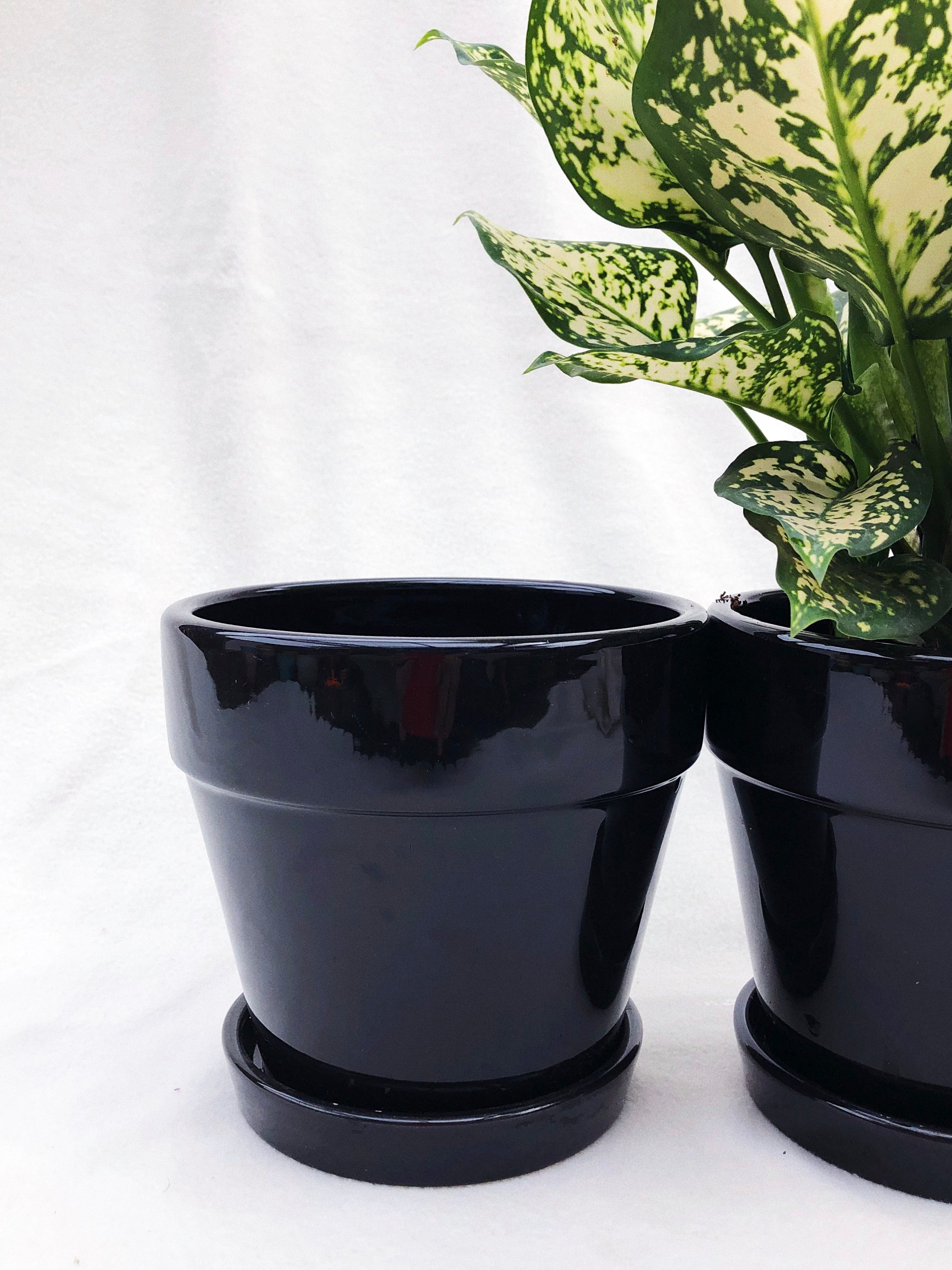 MEDIUM BLACK POT