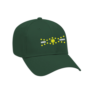 Audio Visual Hat - Green