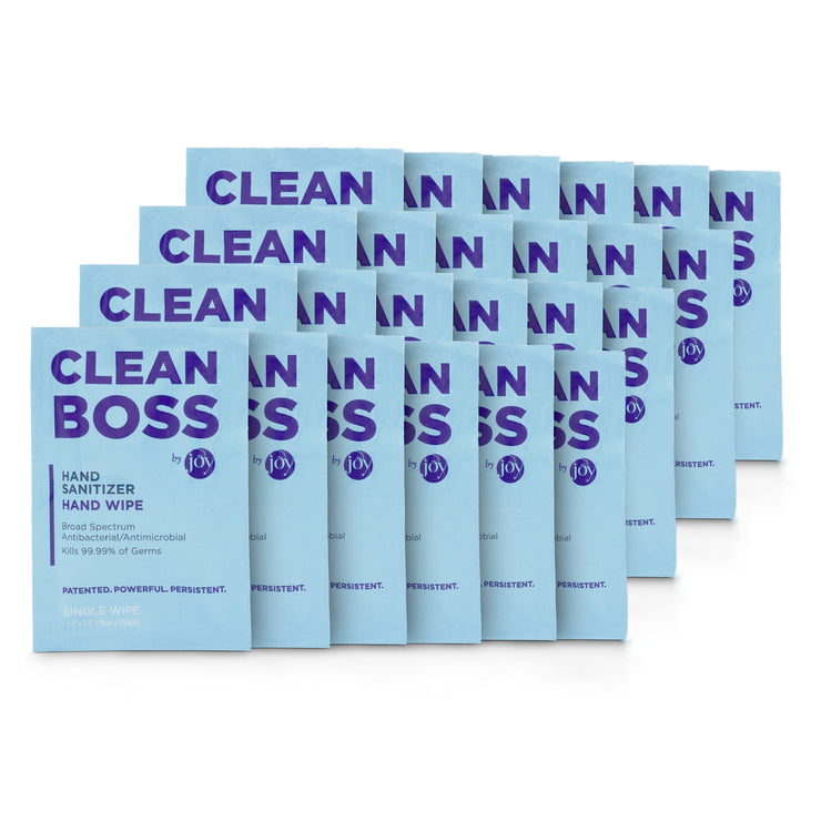 24 Pack Hand Sanitizer Individual Wipes