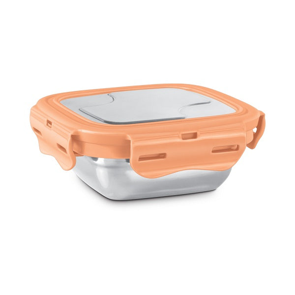 Milton Robust Stainless Steel Tiffin Box with Convenient Click-Lock Feature