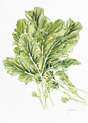 "Kale Watercolor Print 5""x7"""