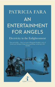 An Entertainment for Angels; Patricia Fara