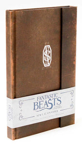 Fantastic Beasts And Where To Find Them, Newt Scamander