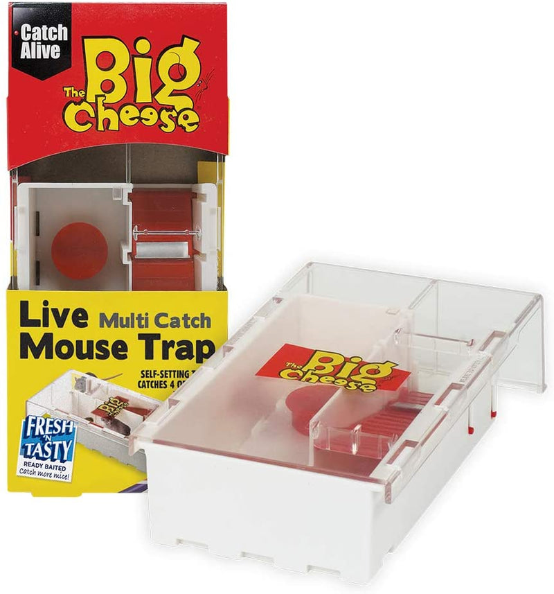 Big Cheese Multi-catch Baited Mouse Humane Trap {STV162}