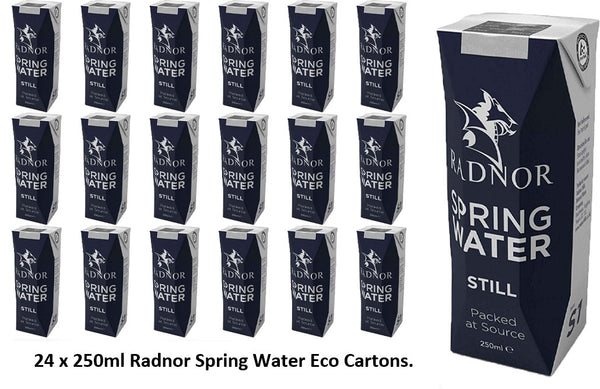 Radnor Hills Spring Still Water 24x250ml