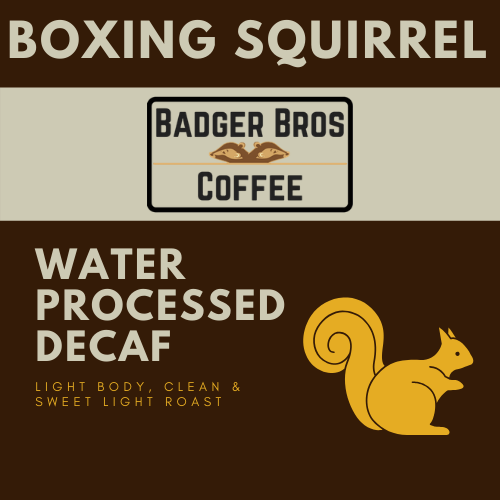 Boxing Squirrel RS Water Decaf