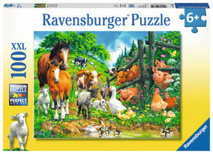 Animal Get Together 100 pc