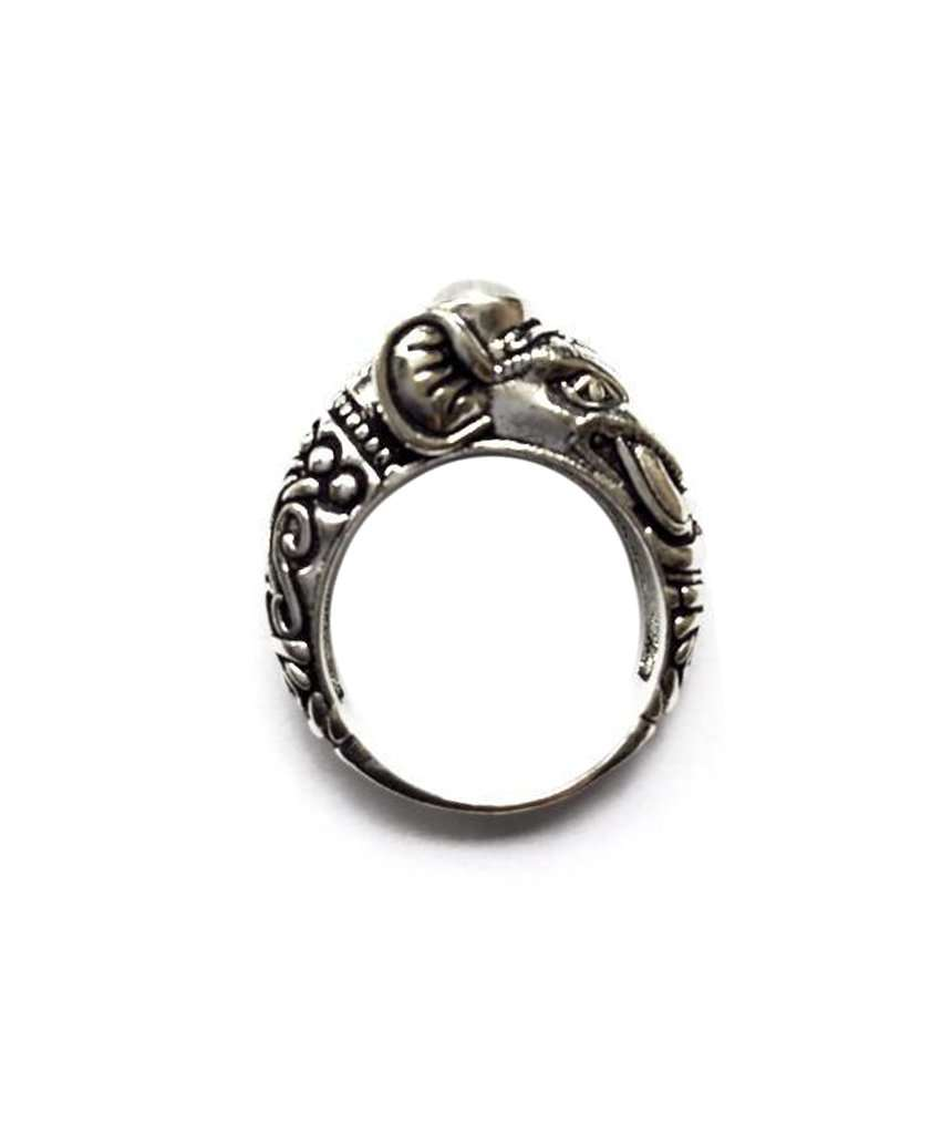 Circus Elephant Ring