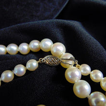 "Load image into Gallery viewer, 19"" Graduated Cultured Pearl Necklace Vintage Classy"