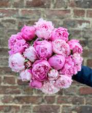 Load image into Gallery viewer, Our pick of the peonies - large bundle