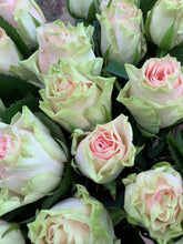 Load image into Gallery viewer, Light Pink Roses