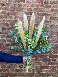 Natural Pampas Grass Mixed Bunch