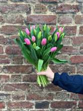 Load image into Gallery viewer, Our pick of the Tulips