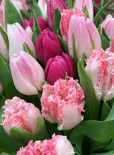 Load image into Gallery viewer, Pink Tulip Mix