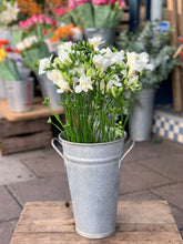 Load image into Gallery viewer, White freesia