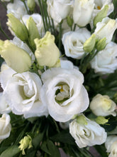 Load image into Gallery viewer, White lisianthus