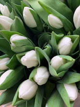 Load image into Gallery viewer, White tulips