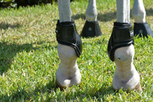 Load image into Gallery viewer, Young Horse Hind Boot - EquiFit