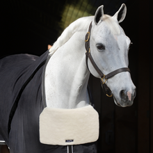 Load image into Gallery viewer, BlanketBib - Equifit