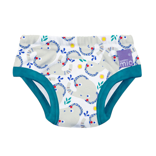 toilet training undies
