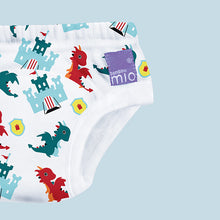 Load image into Gallery viewer, toilet training undies, 3 pack