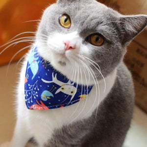 Designer Kitty Bandana