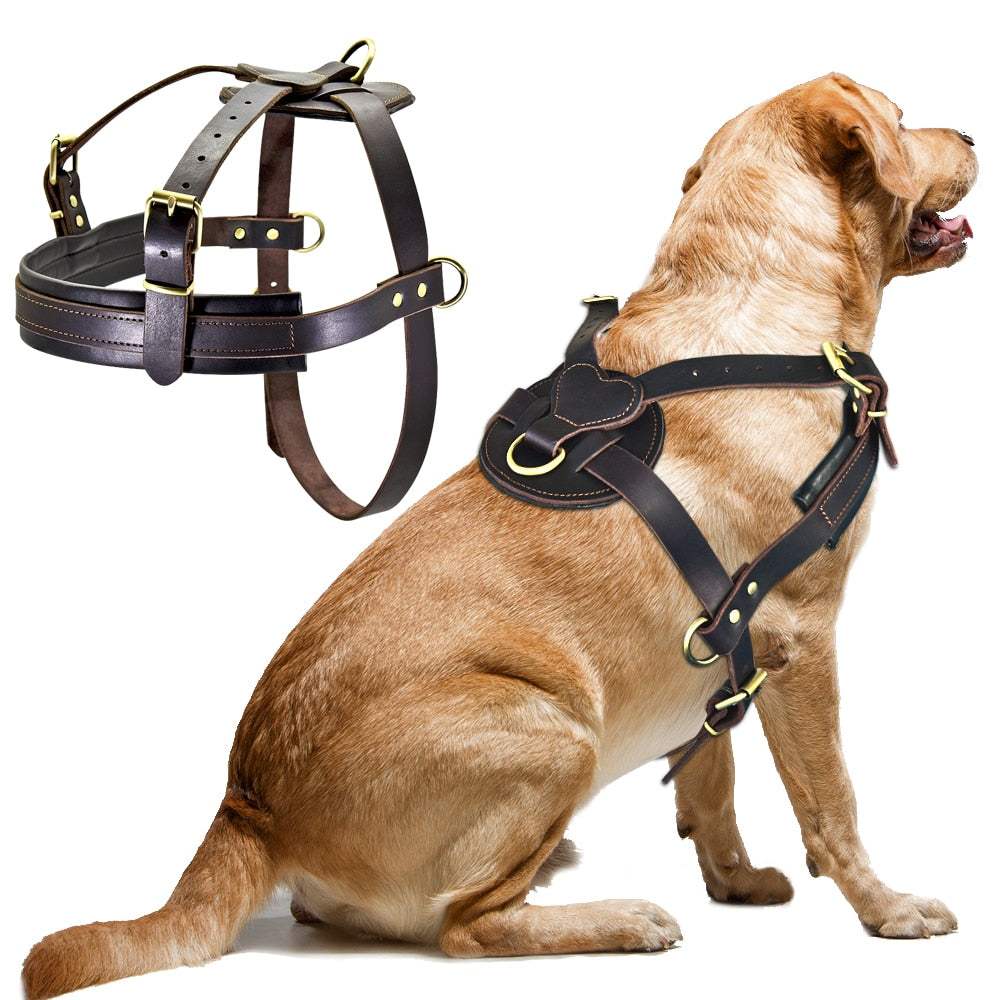 Soft Leather Harness For Medium/Large Dogs