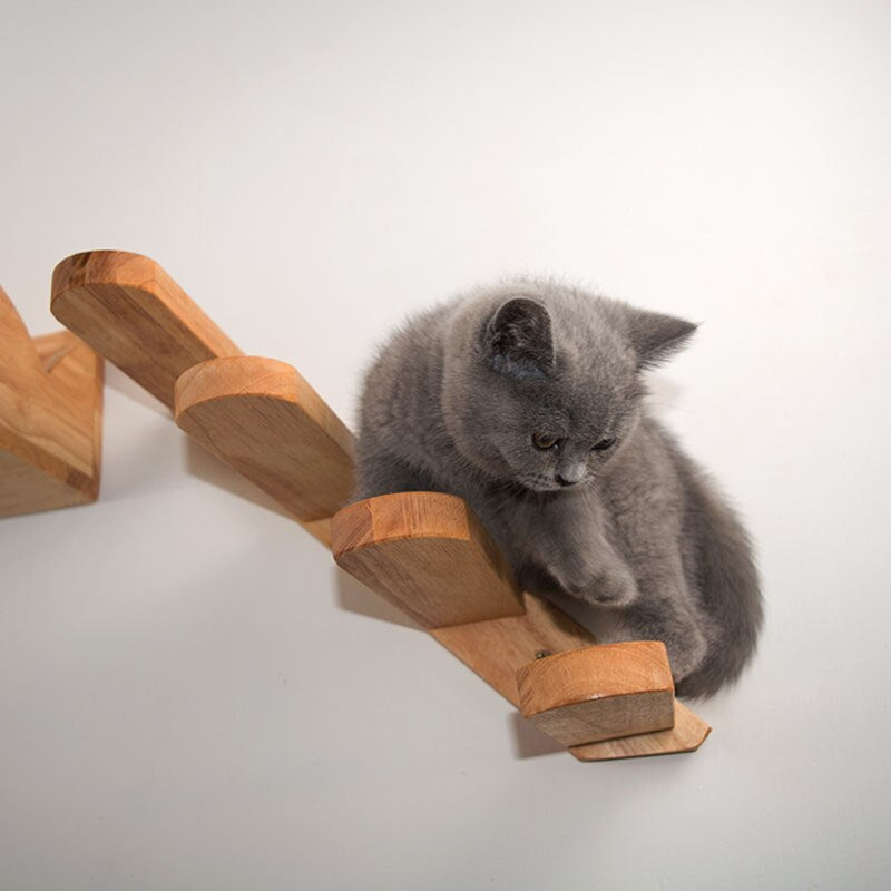 Wall-mounted Kitty Climbing Ladder