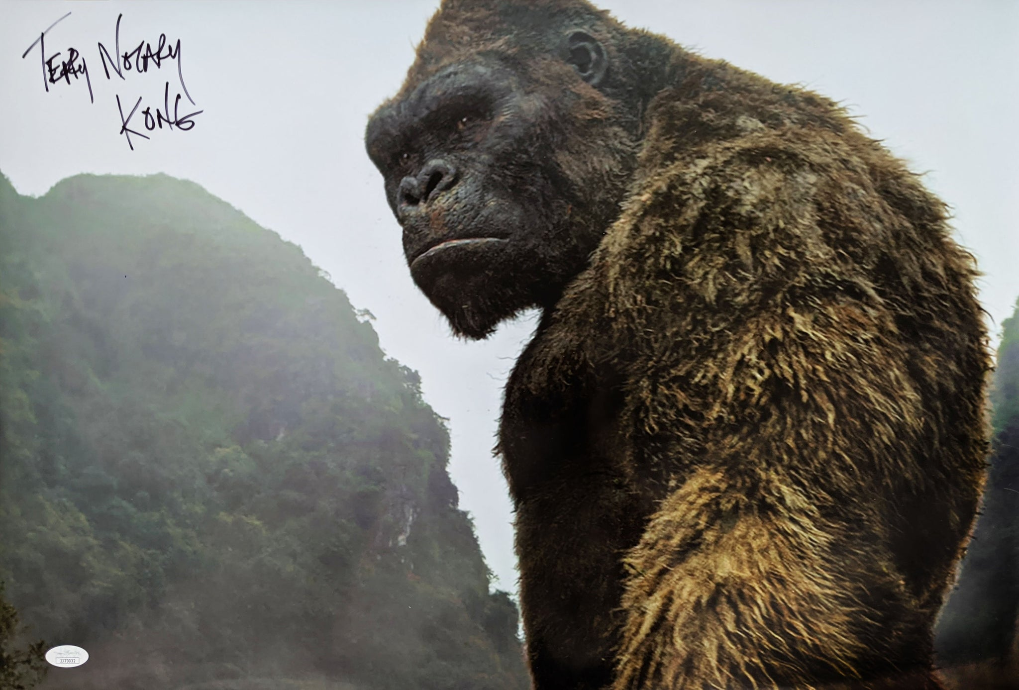 Terry Notary Kong Skull Island 16x24 Photo Signed Autographed JSA Certified COA GalaxyCon