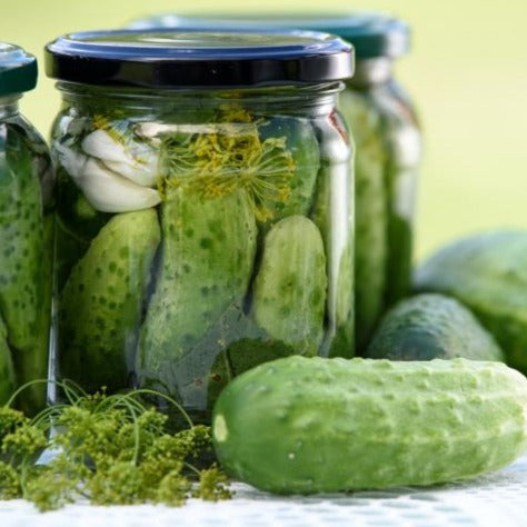 Pickling Cucumbers (22 lbs) + 3 Bunches Flowering Dill