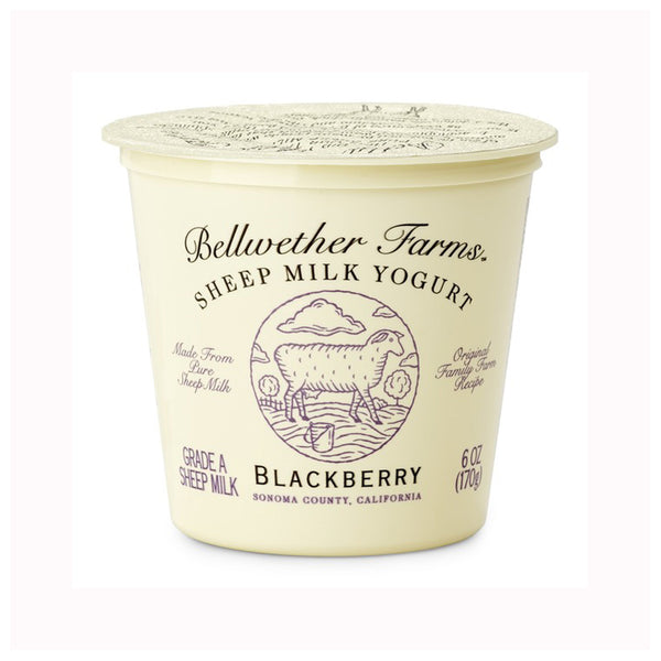 Bellwether Farms Blackberry Sheep Milk Yogurt, 6 oz