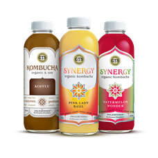 GTS Synergy Organic Kombucha Probiotic Drinks, 16 oz