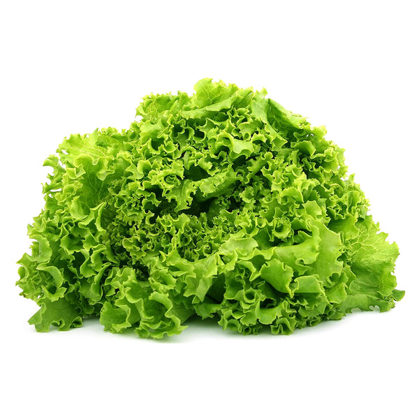 Green Leaf Lettuce (each)