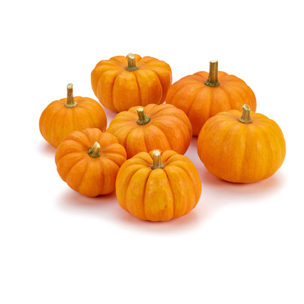 Mini Orange Pumpkins (each)