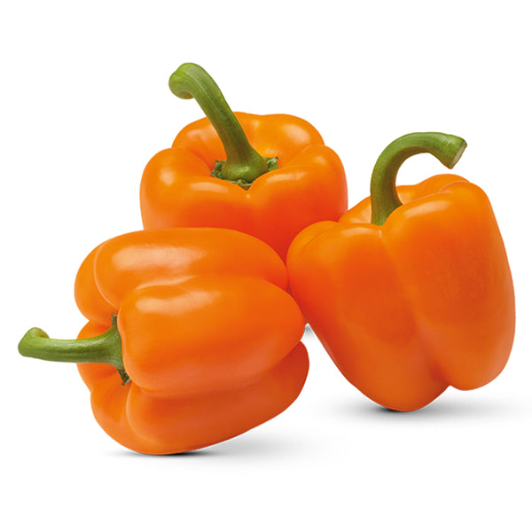 Orange Bell Pepper (each)