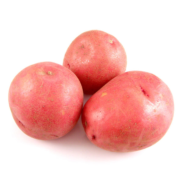 Red Potatoes, Bulk (50 lbs)