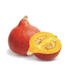 Red Kuri Squash (each)