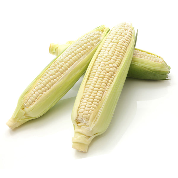 White Corn (2 count)