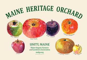 Maine Heritage Orchard Poster