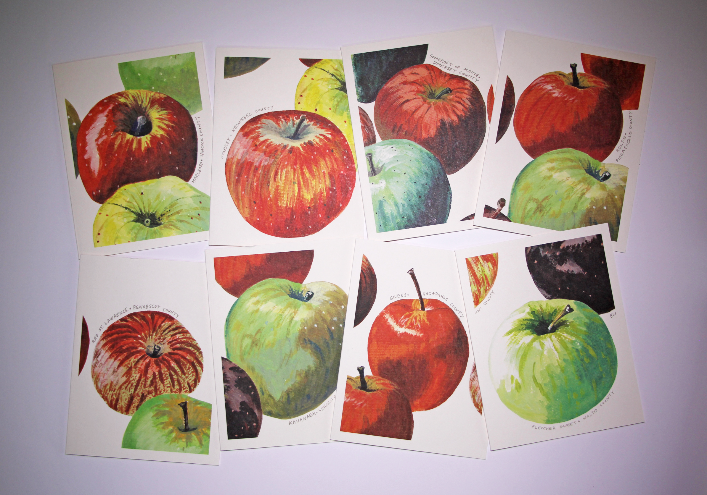 Maine Heirloom Apple Notecards Set