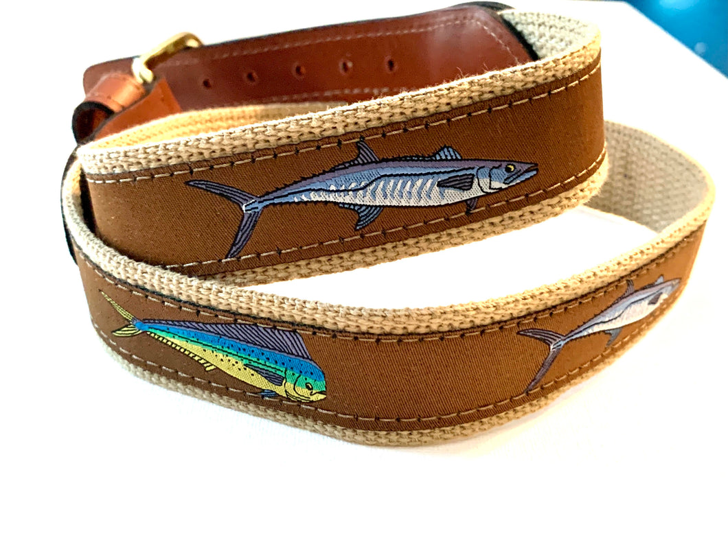 Belt Brown Fish