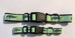 Dog Collar Seafoam Dolfin