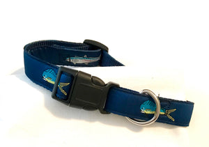 Dog Collar Fish