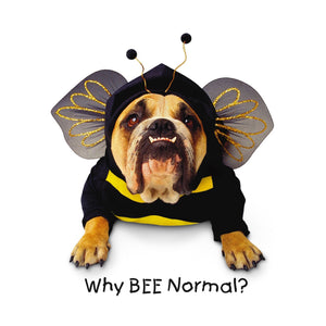 Zelda Wisdom Why Bee Normal Stickers