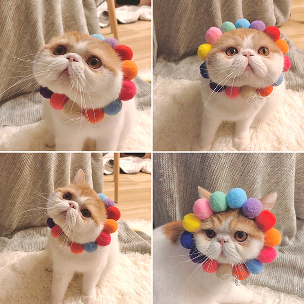 Top Rated Colorful Balls Stretchy Collar
