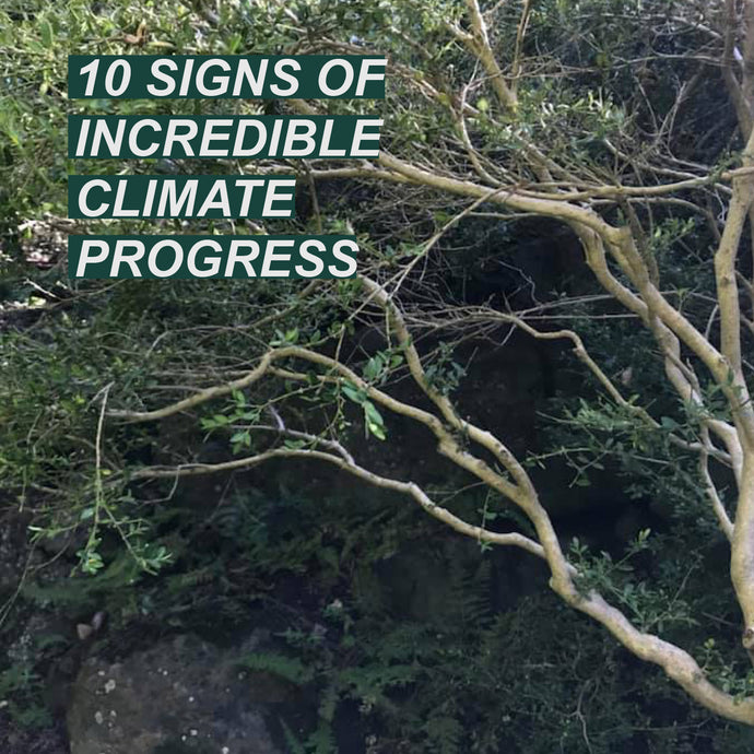 10 SIGNS OF INCREDIBLE CLIMATE PROGRESS