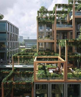 WHY GREEN ROOFS?