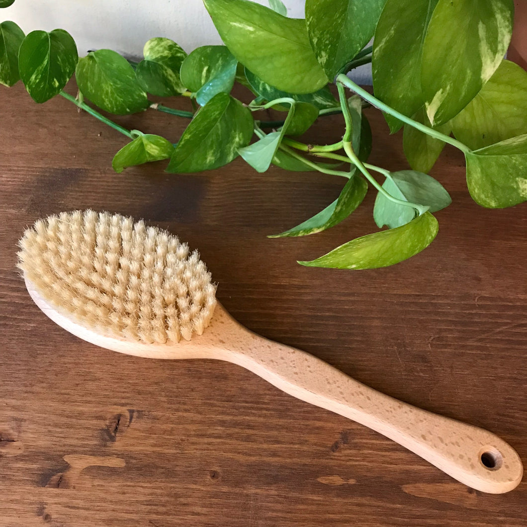 Massage Body Brush with Handle