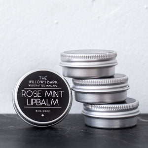 Nourishing Lip Balms