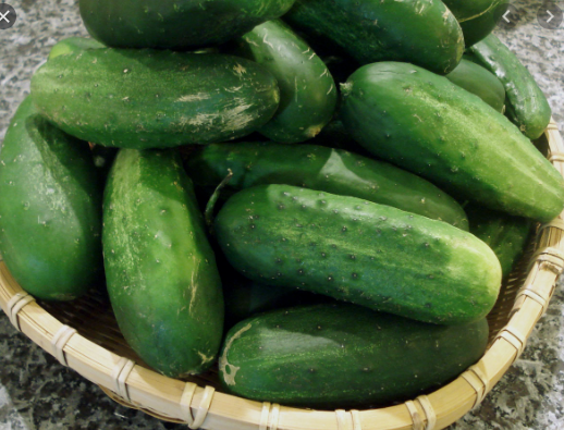 Organic Non-GMO Homemade Pickles Cucumber